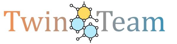 TwinTeam Logo